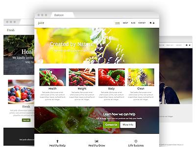 A set of easy to re–design website themes